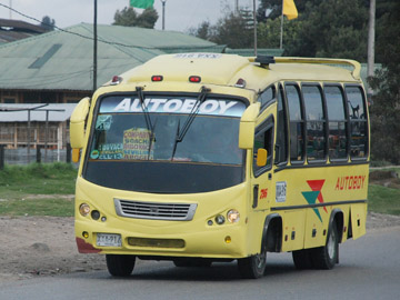 buses autoboy